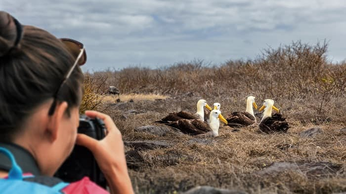 Galapagos Islands Wildlife Adventure Cruise