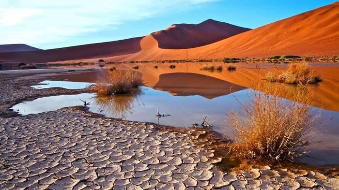 Ultimate Namibia Safari Adventure Tour - Dunes at Sossusvlei