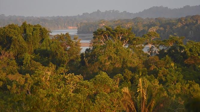 Portrait of Ecuador's Amazon