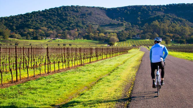 Easy Sonoma Wine Country Cycle with The Outbound Collective