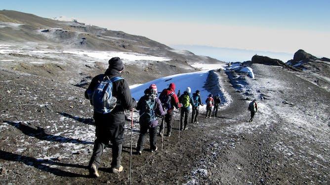 My Summit Kilimanjaro & Safari Adventure