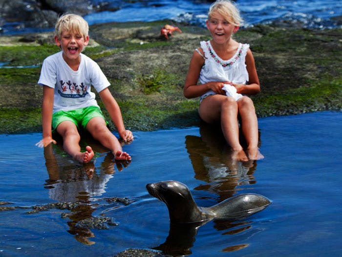 kids sea lions galapagos