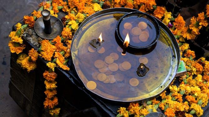 Webinar: Embarking on a Wellness Journey in India