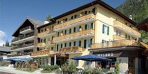 Hotel Glacier and Sporting-Champex