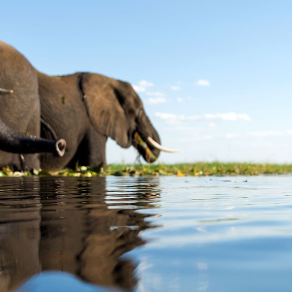 Botswana Adventure Tour