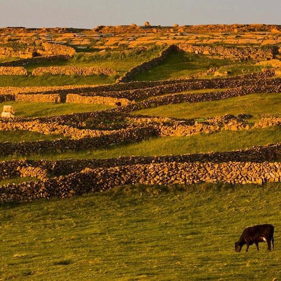 Ireland Adventure Tours