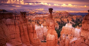 Utah National Parks Multi-Adventure