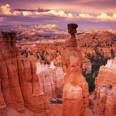 Utah National Parks Multi-Adventure