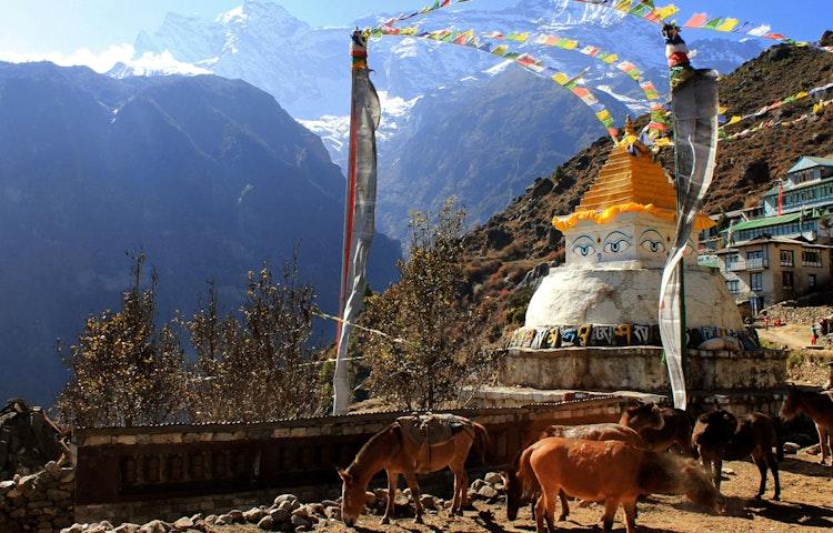 namche - Nepal Everest Base Camp Trek
