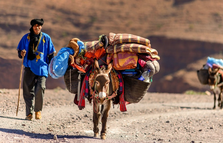 man with donkeys - Morocco High Atlas Mountain Trekking