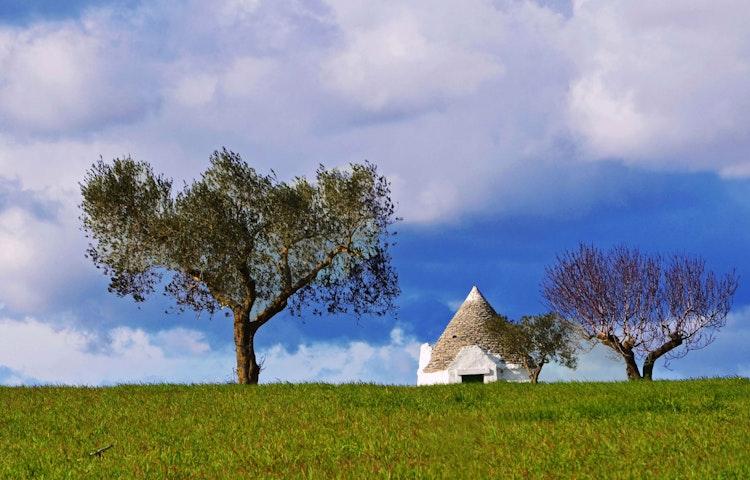 house and tree - Italy Coastal Puglia Hiking