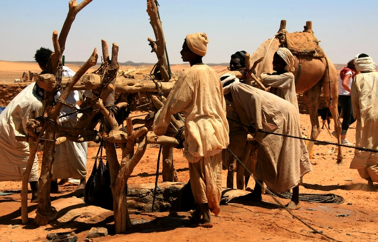 herders at well