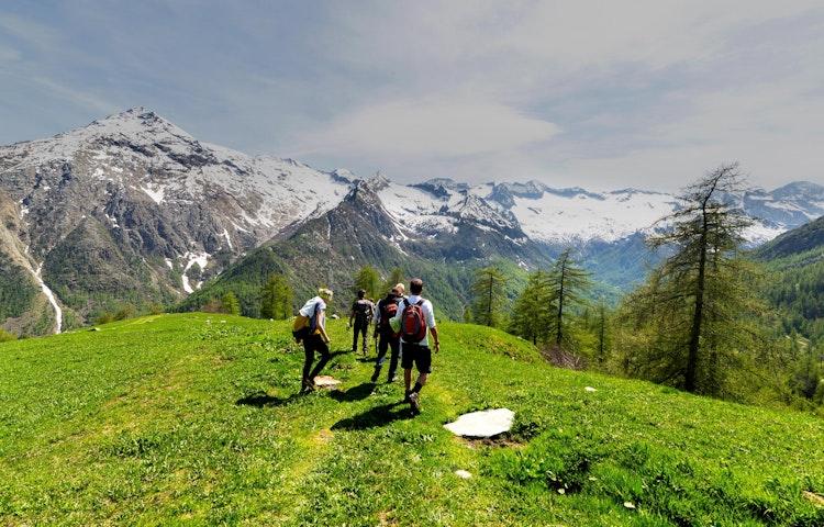ridge hikers - Alps Mont Blanc Family Adventure