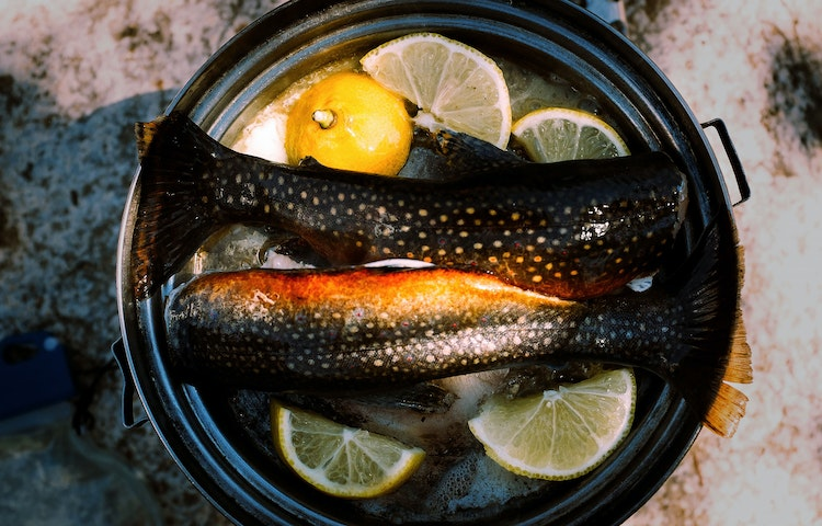 trout in pan