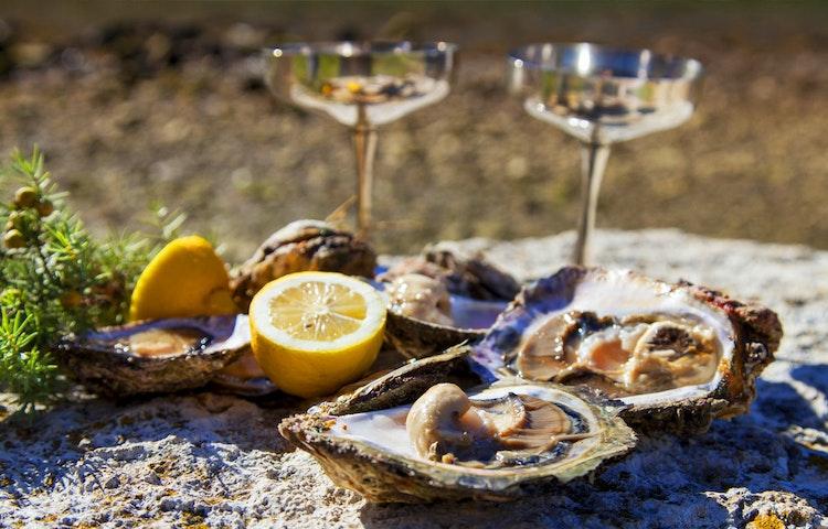 oysters - Croatia Hiking & Kayaking Private Adventure