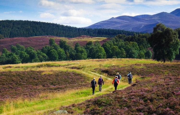 heather hikers - Scotland Western Isles Hiking Tour