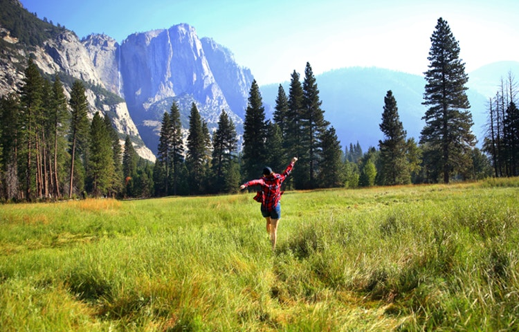 field - California Yosemite National Park Hiking Adventure