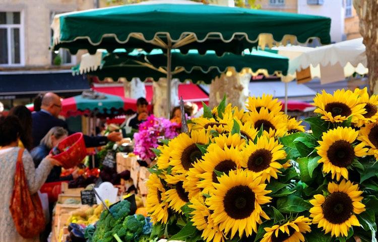 flower market - France Provence Walking Private Adventure