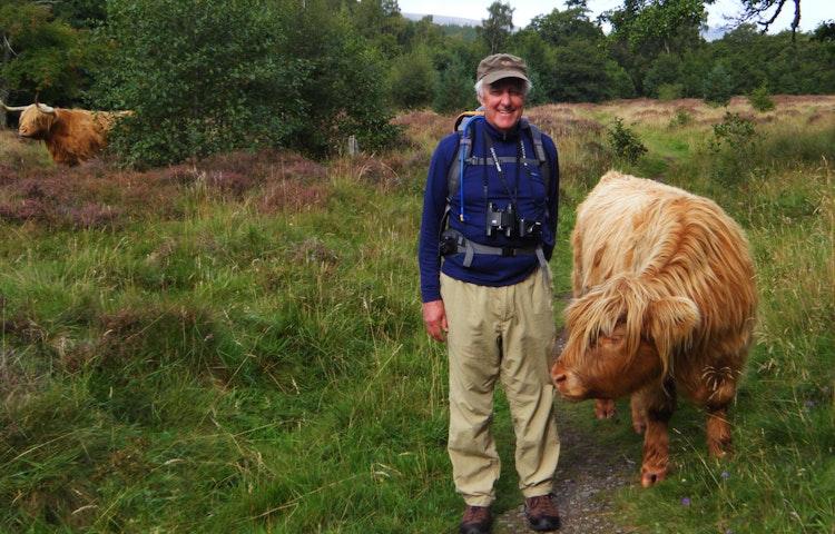 highland cattle friends - Scotland Western Isles Hiking Tour