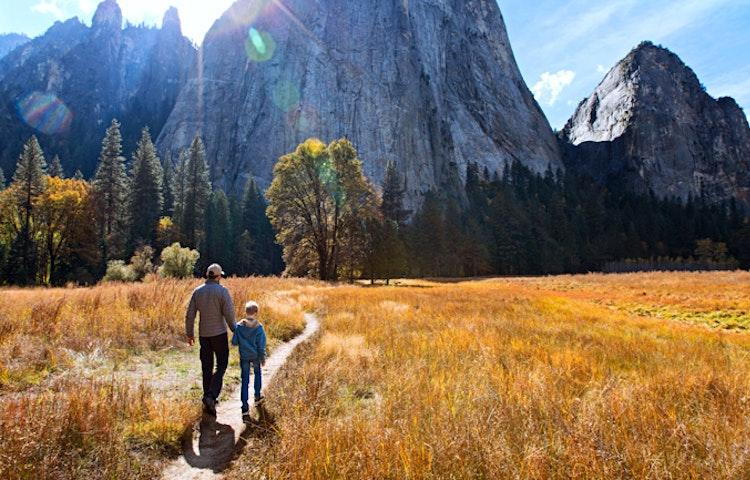 trail - California Yosemite National Park Hiking Adventure