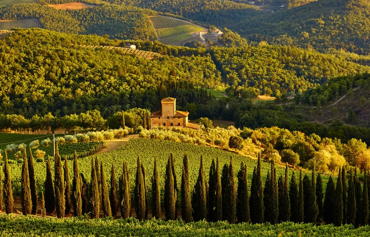 chianti - Italy Tuscany and Cinque Terre Walking