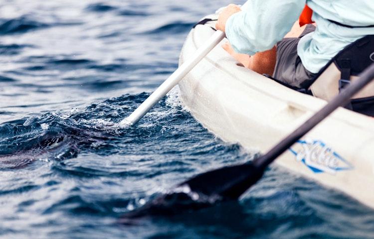 kayak close up