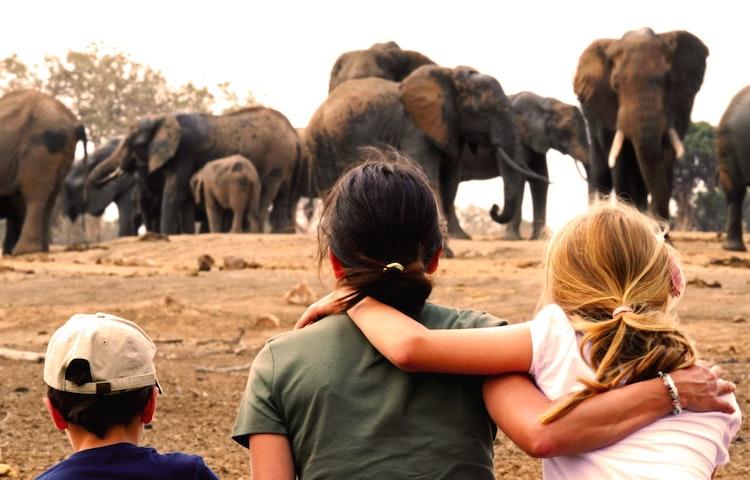 woman, kids, elephants - Tanzania Ultimate Serengeti Active Safari