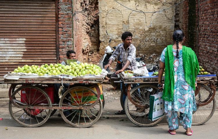 streeet vendor - India Secrets of Kashmir Multi-Adventure