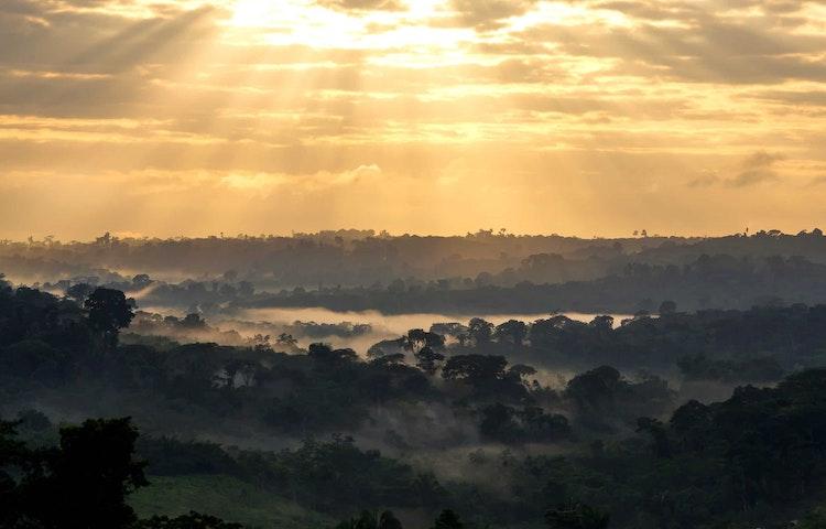 amazon sunrise - Brazil Amazonas Wildlife River Cruise