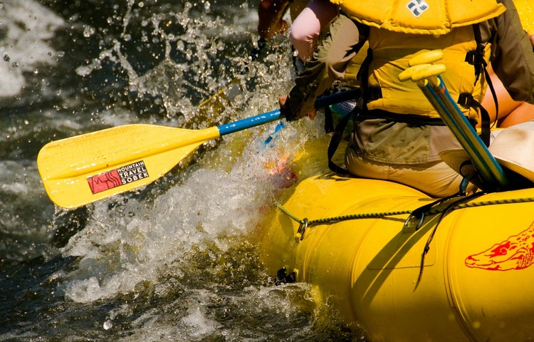 paddle closeup
