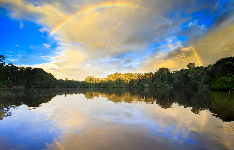 rainforest rainbow - Brazil Amazonas Wildlife River Cruise