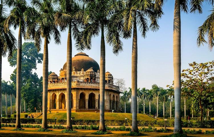 palm garden - India Secrets of Kashmir Multi-Adventure