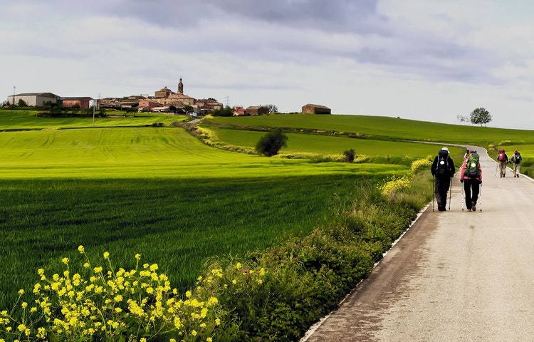camino hikers and green fields