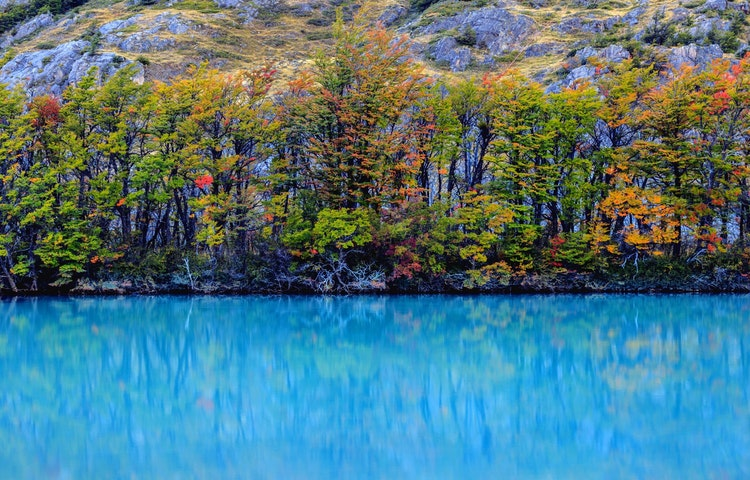 fall colors and glacial lake - Chile & Argentina Ultimate Patagonia Hiking