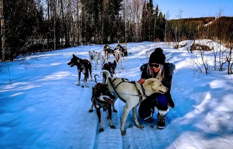 dog sledding - Alaska Aurora Igloo Private Multi-Adventure