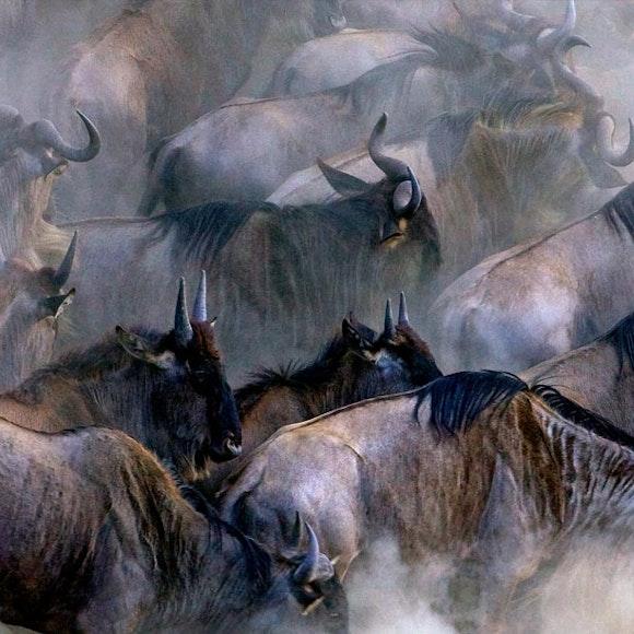 Tanzania Ultimate Serengeti Active Safari | MT Sobek