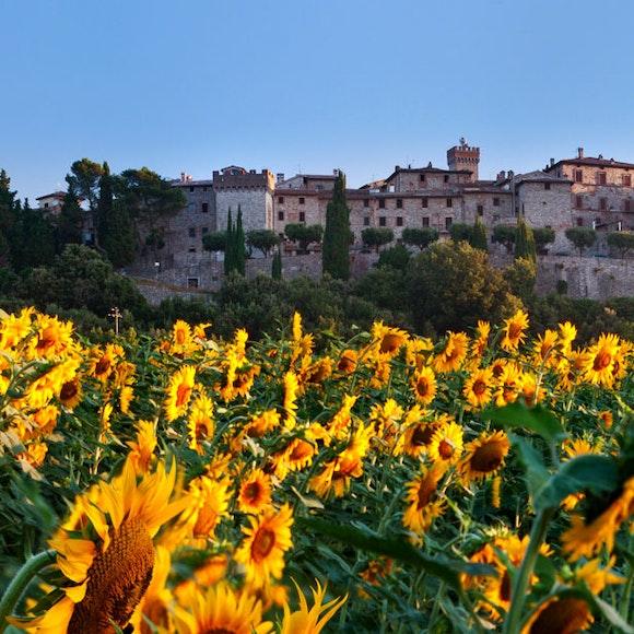 Italy Tuscany and Umbria Walking   MT Sobek