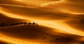 Morocco Camels & Casbahs Hiking