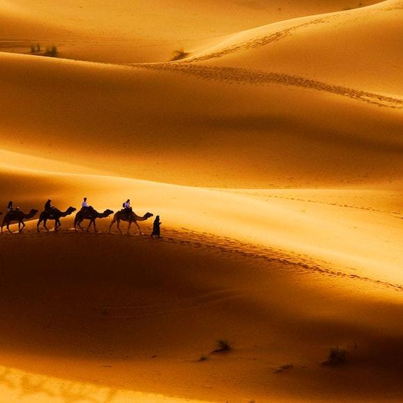 Morocco Camels & Casbahs Hiking | MT Sobek