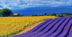 France Provence Village to Village Hiking