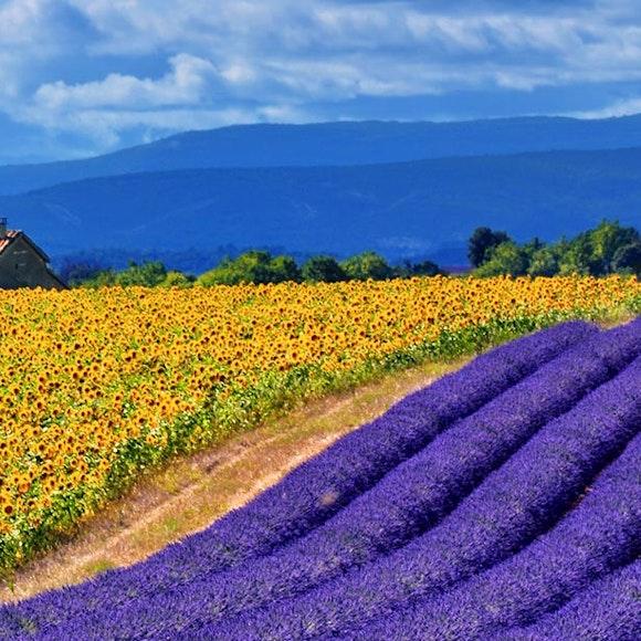 France Provence Village to Village Hiking | MT Sobek