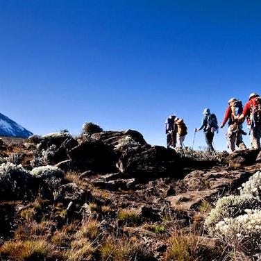Tanzania Climb Kilimanjaro