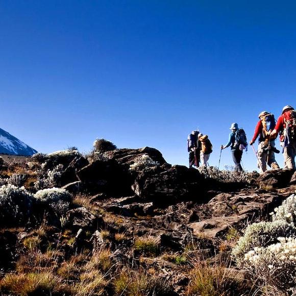Tanzania Climb Kilimanjaro | MT Sobek