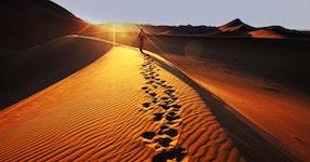 Namibia Wildlife & Dunes Safari