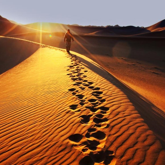 Namibia Wildlife & Dunes Safari   MT Sobek